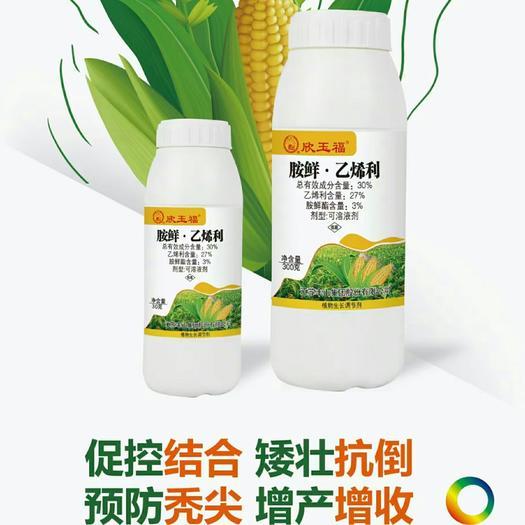 胺鲜酯乙烯利  欣玉福-全国首款可溶液剂30%胺鲜乙烯利