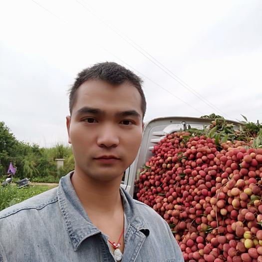 状元红荔枝 荔枝