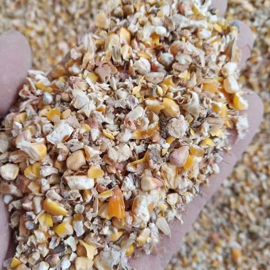 碎玉米,次玉米,玉米下腳料,常年供應
