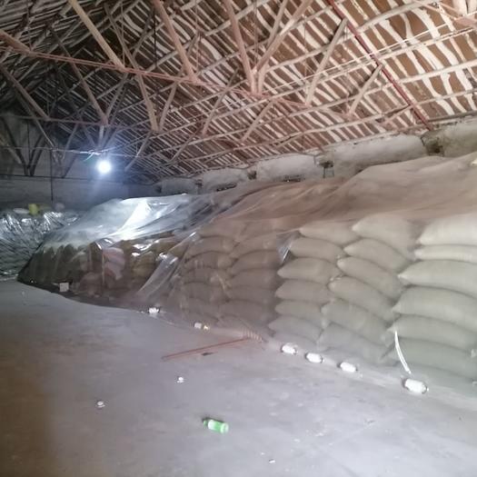 红麦  湖北天门多宝产小麦。质量好。