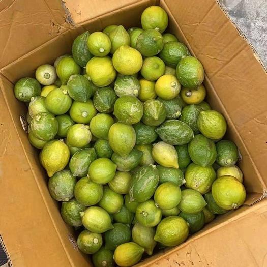 广东香水柠檬,二级果,青花皮,青黄果,小青果省内包邮