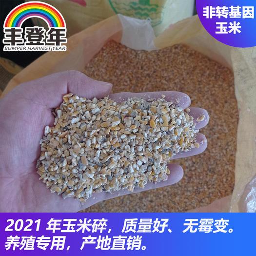 黄玉米粒  碎玉米出售,无霉变,玉米碎价格实惠