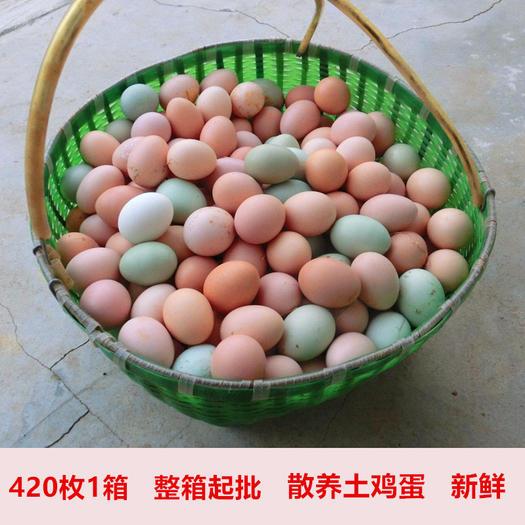 全国批发整箱420枚/箱正宗农村散养鲜艳土鸡蛋绿壳土鸡蛋