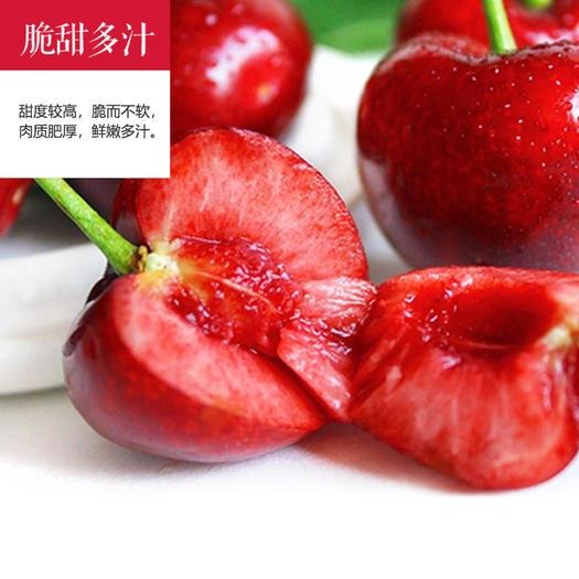 白鹿原大樱桃当季现摘大红灯笼樱桃应季新鲜孕妇水果整箱包邮