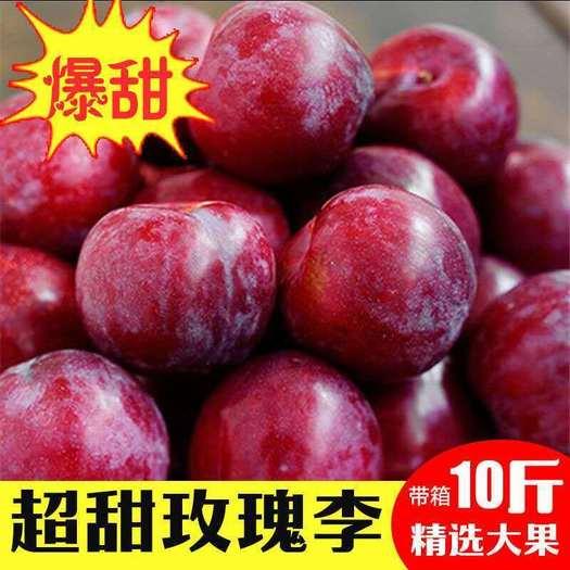現摘陜西紅玫瑰冰糖李李子新鮮應季水果孕婦紅布林