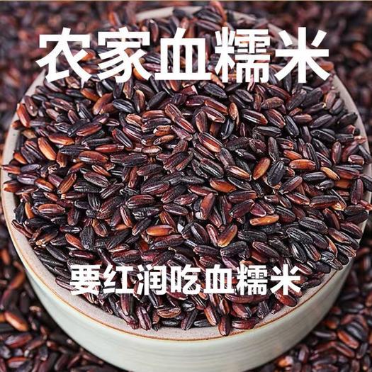 黑糯米血糯米農家自種棕子米養生養顏米5斤裝包郵