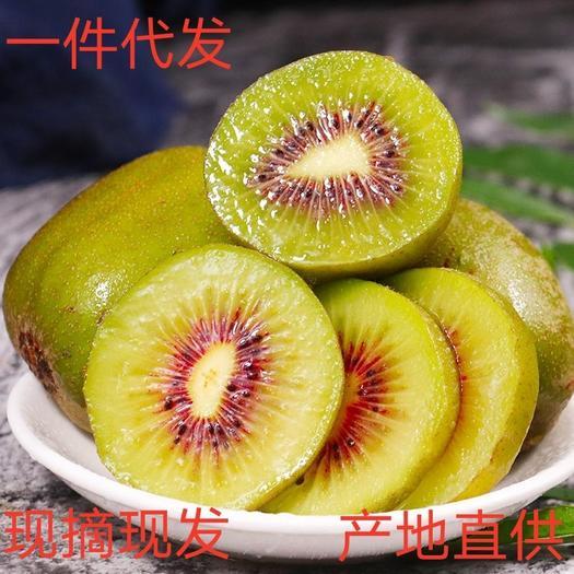 现货四川蒲江红心猕猴桃奇异果24个装一件代发新鲜应季水果