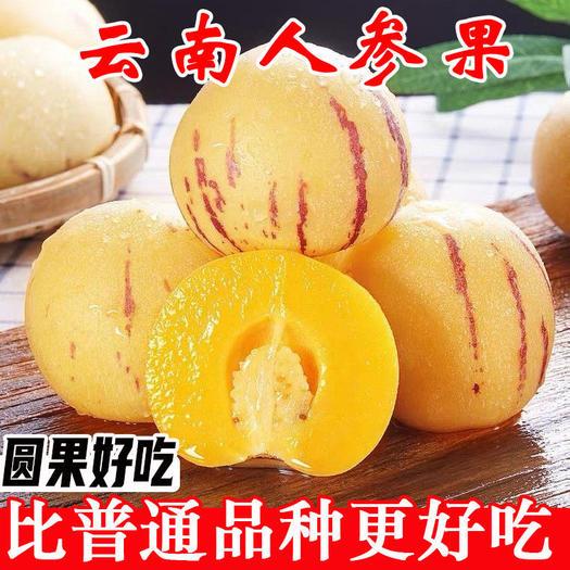云南石林人参果新鲜现摘水果5斤/10斤包邮黄肉人参果产地直发