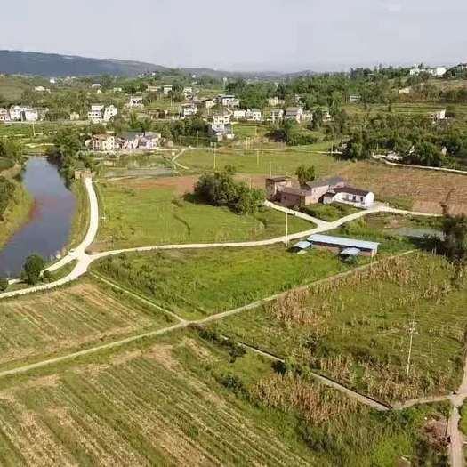 農場 重慶市永川區220畝蔬菜基地出租
