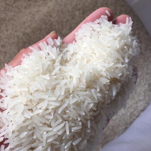 长粒稻 皇朝贡米,口感滑而不腻,营养丰富