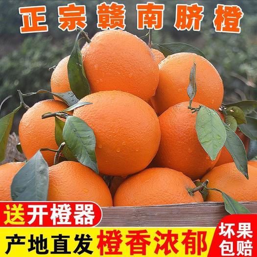 【精品】正宗赣南脐橙江西橙子新鲜水果孕妇手剥橙应季甜脐橙包邮