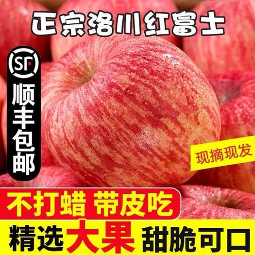红富士苹果  【顺丰发货】陕西洛川苹果延安红富士水晶苹果冰糖心非阿克苏