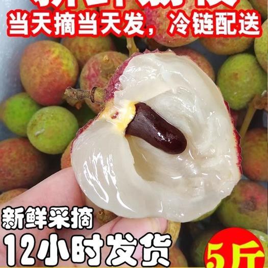 桂味荔枝  现摘新鲜荔枝广西灵山妃子笑桂味糯米滋应季水果