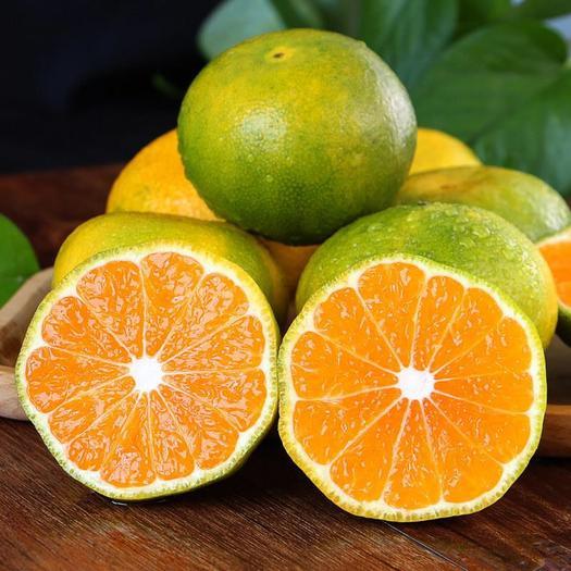 青皮蜜桔四川特产橘子多规格一件代发