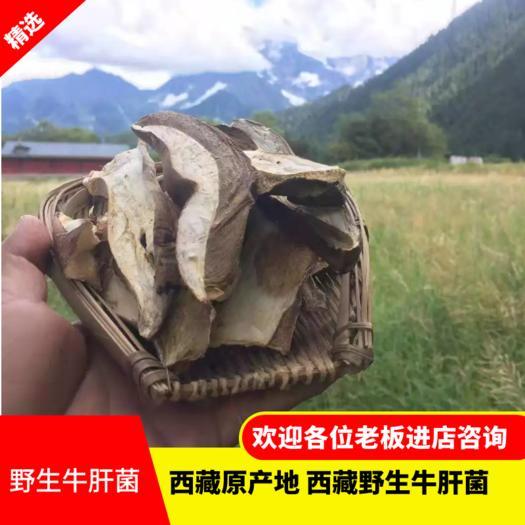 美味牛肝菌  牛肝菌干片 野生牛肝菌  一手货源 西藏产地直发 质量保证