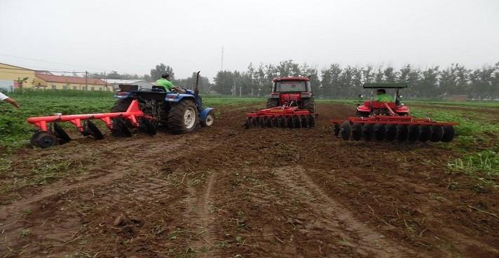 2019年农业支持保护补贴什么时候发?申报领钱时需要注意什么?