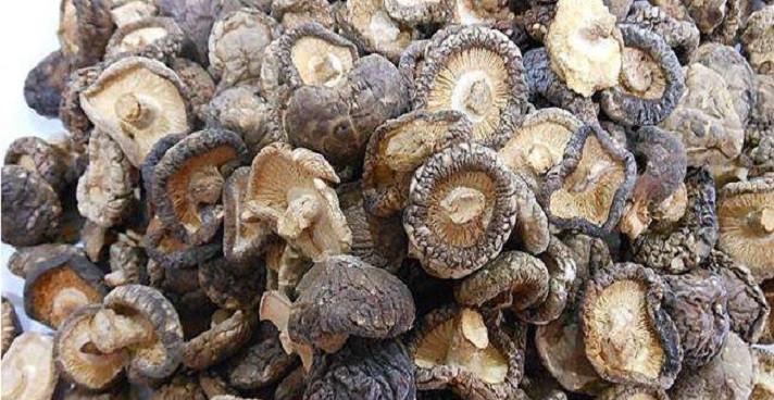香菇的主要產地在哪里?當前香菇的價格行情怎么樣?