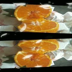 丹棱不知火丑橘新鲜采摘农户直发