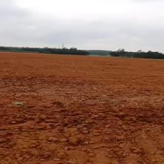 旱地 出租 5年以下 100~500畝
